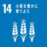 小麦を豊かに育てよう